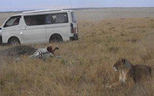 kenya wildlife camp for children