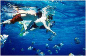 Maldives Marine Summer Camp 2108